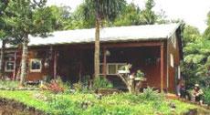 Homestay accommodation North Hokianga